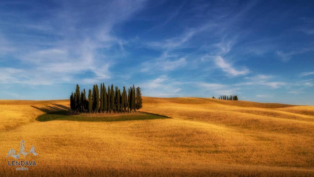 Peter Škrilec - Tuscan Cypresses